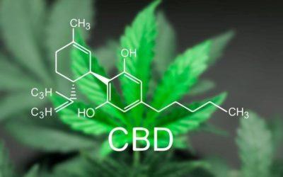 A Treasure Trove of CBD research